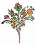 Bonitas: bouquets and brickbats (update)