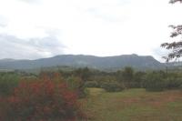 I had a farm in Swaziland