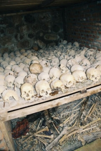 France's role in the Rwandan genocide