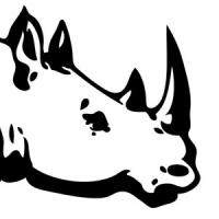 Turning rhinos into fast bucks
