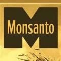 Featured letter: Anti-GMO horror stories are just mumbo-jumbo