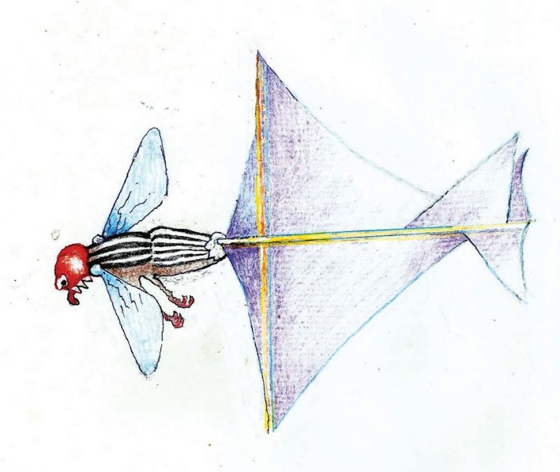 Aerodynamics. Flights of Fancy
