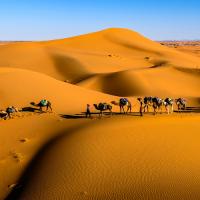 Dubai's loan scams for Africa